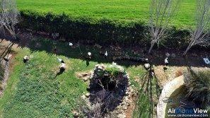 AMUS Air Drone View reportaje drones buho real aguila buitre cigüeña dron drones rpas uav aereo buitres centro conservacion naturaleza accion mundo salvaje www.airdroneview.com (11)