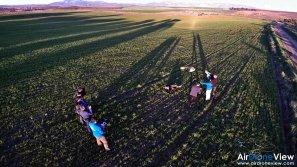 AMUS Air Drone View reportaje drones buho real aguila buitre cigüeña dron drones rpas uav aereo buitres centro conservacion naturaleza accion mundo salvaje www.airdroneview.com (13)