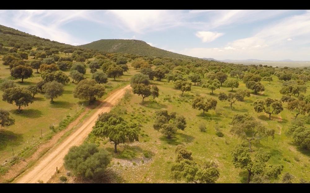 air drone view grabacion aerea badajoz aereo extremadura cabeza del buey aesa (5)