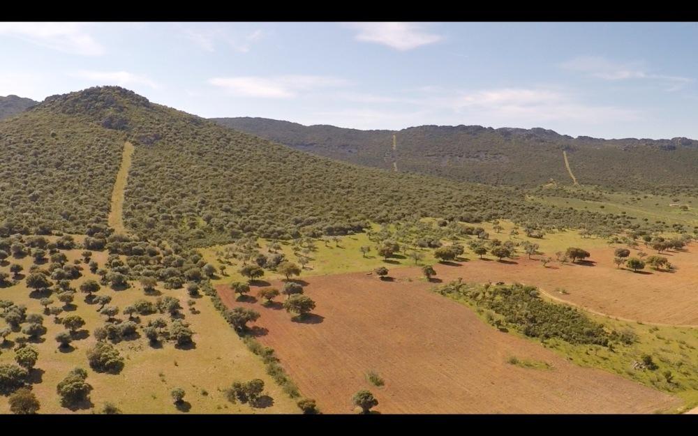 air drone view grabacion aerea badajoz aereo extremadura cabeza del buey aesa desde el aire finca extension