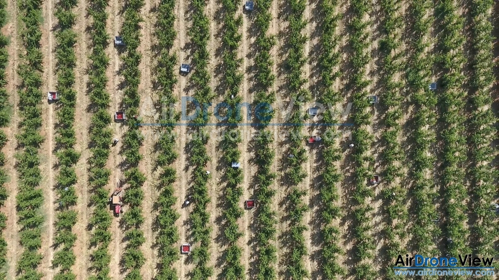 air drone view jurofrutas extremadura badajoz portugal legal operadores turismo video promocional phantom 4 dji