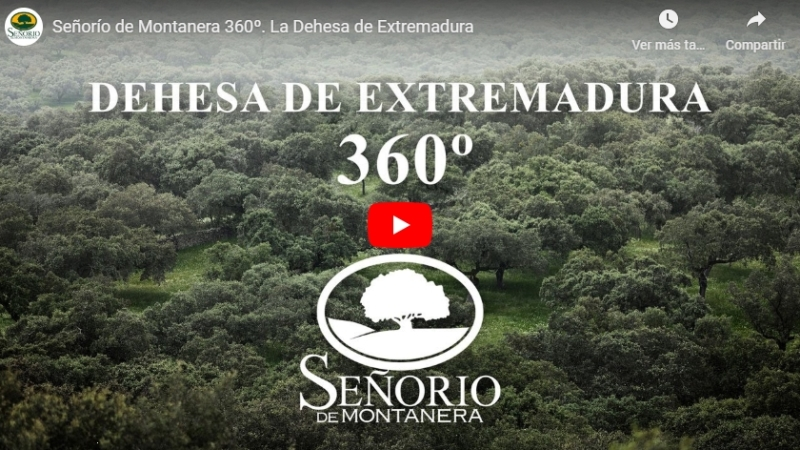 Vídeo aéreo 360 para Señorío de Montanera, con The Three Dragons
