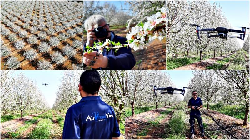 Un regalo para la vista: la floración de los almendros enPortugal